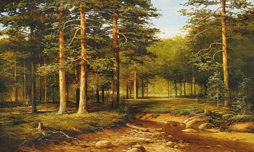 obraz V hlubokém lese