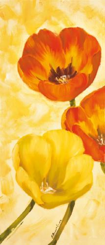 obraz Tulipány 1ZD
