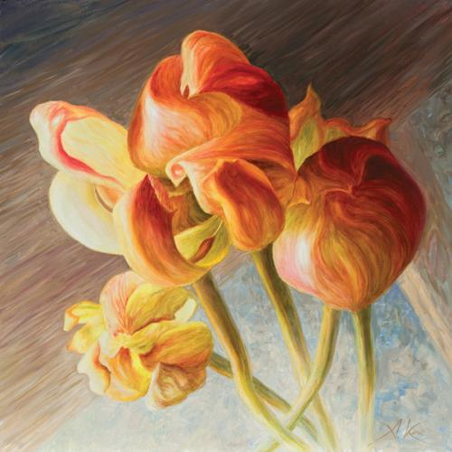 obraz Tulipán III