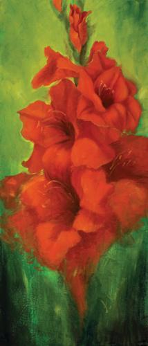 obraz Červená gladiola