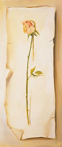 obraz Růže dlouhá